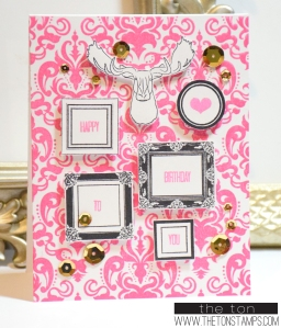 pink damask frames