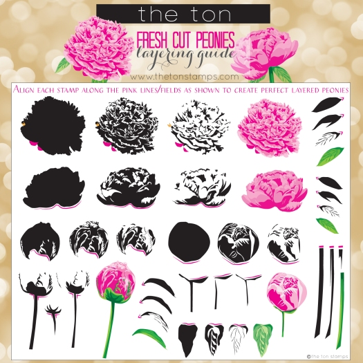 peony layering guide