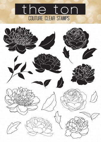 Wild Peonies, 4x6 Clear Stamp Set