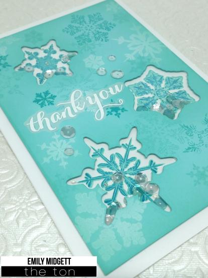 The Ton snowflake shaker detailwm