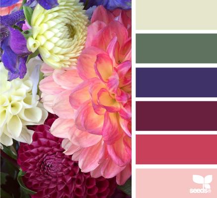Color Palette Challenge The Season
