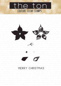 christmas-poinsettia-water
