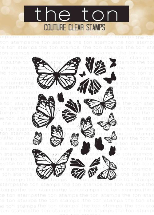 beautiful-butterflies-1-4x6-water
