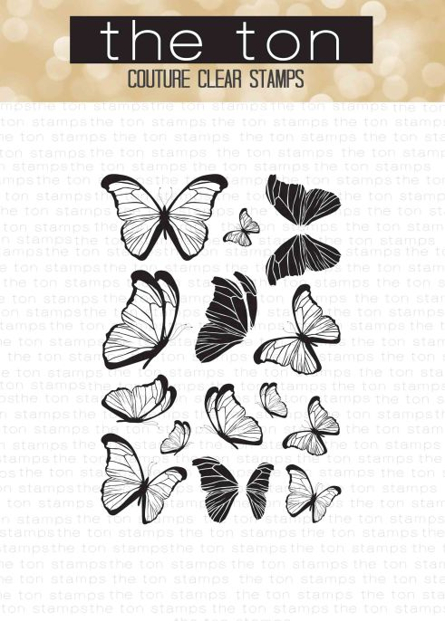 beautiful-butterflies-3-4x6-water