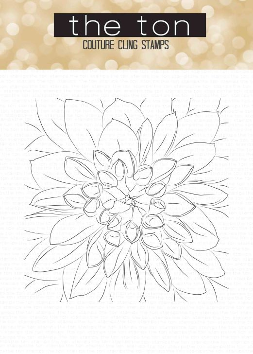 cling-large-dahlia-6x6-water