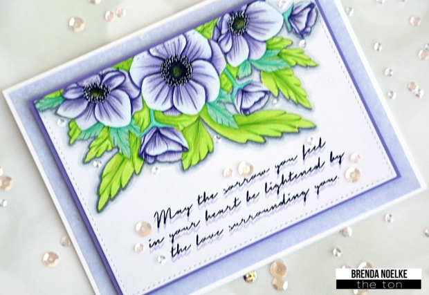Anemone-Wishes-1