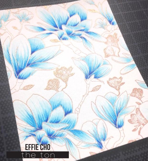blue magnolias 4