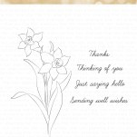 Daffodil Greetings, 3x4 Photopolymer Clear Set (Designed by Eunji)