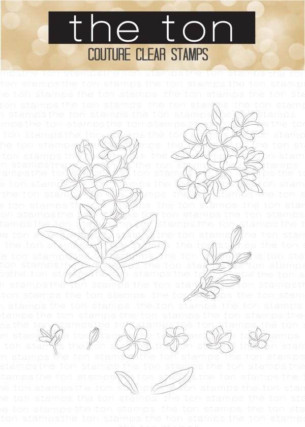 Pretty Plumeria 4x6