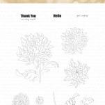 Thankful Chrysanthemum 4x6