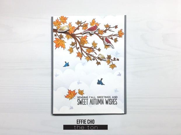 autumn wishes birds