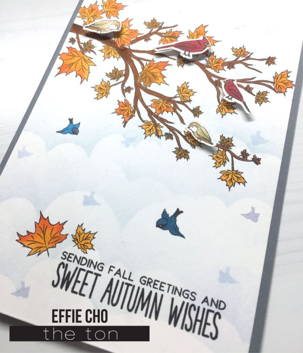 autumn wishes birds2