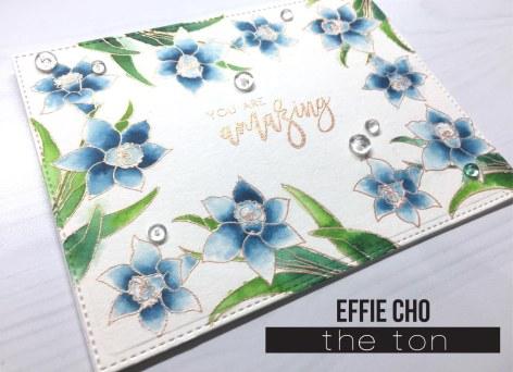 blue daff 2