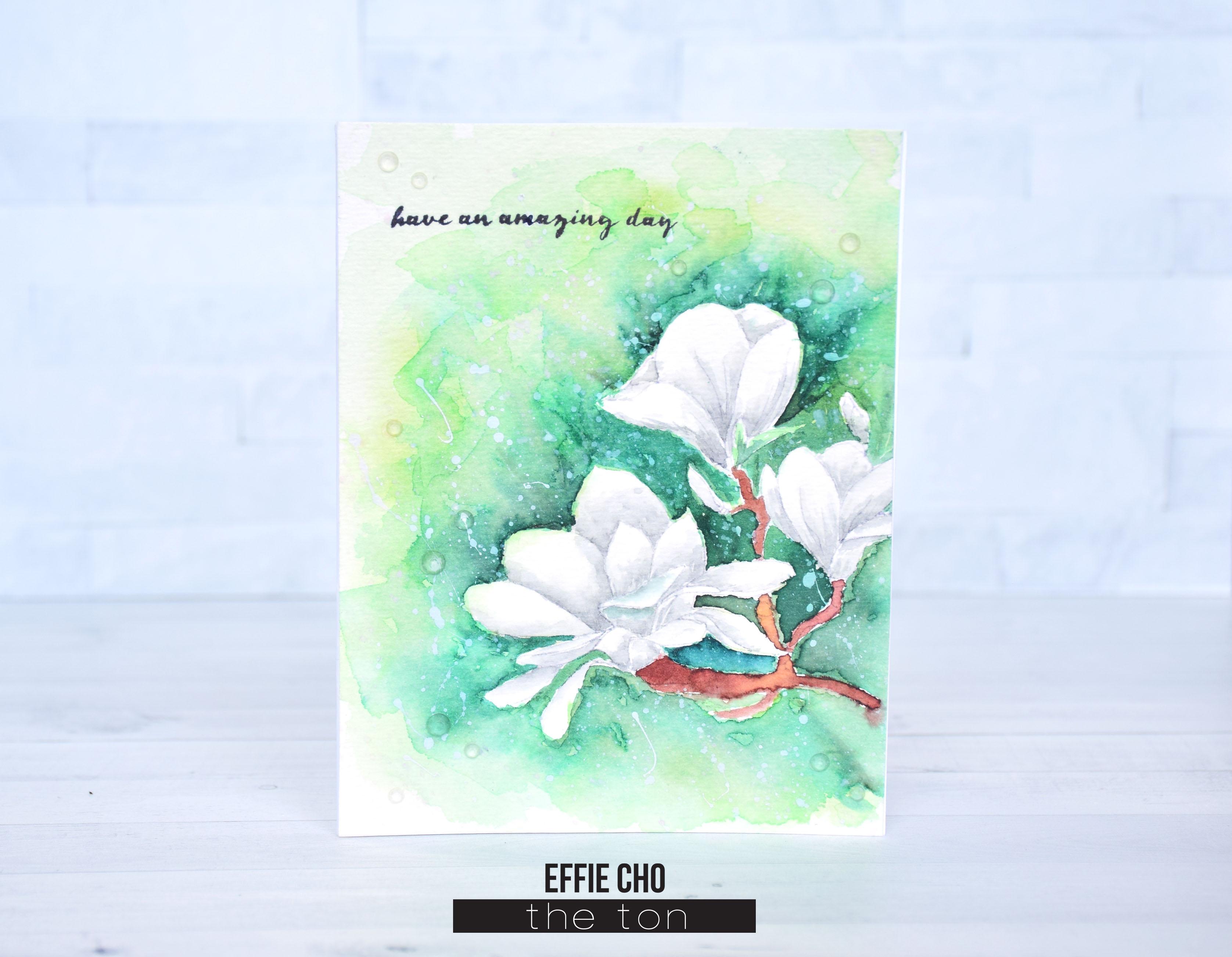 no line magnolias.jpg