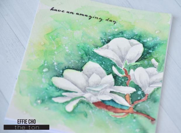 no line magnolias3