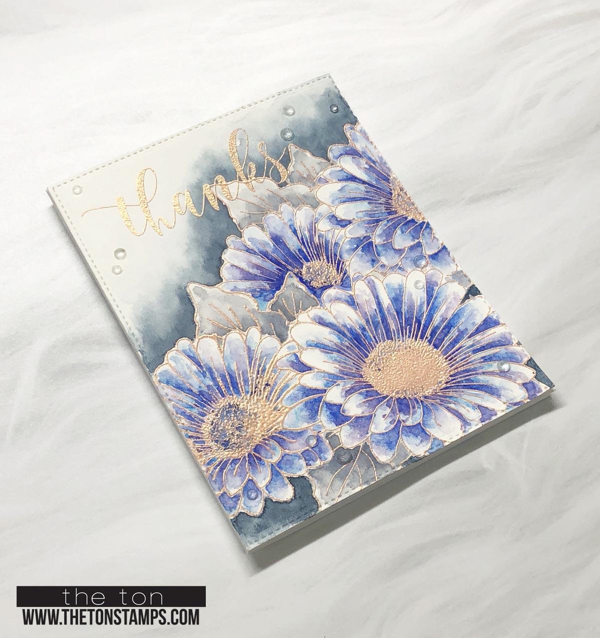 blue daisy duet 2