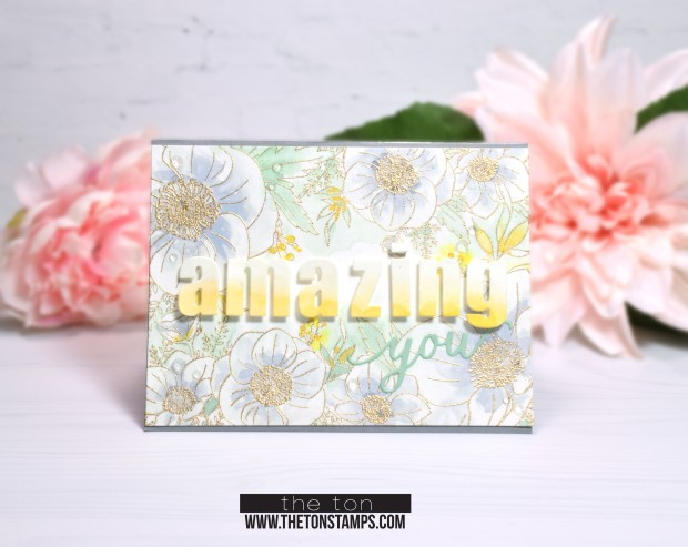 nicu hop anemone card