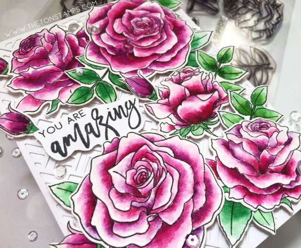 loose roses2