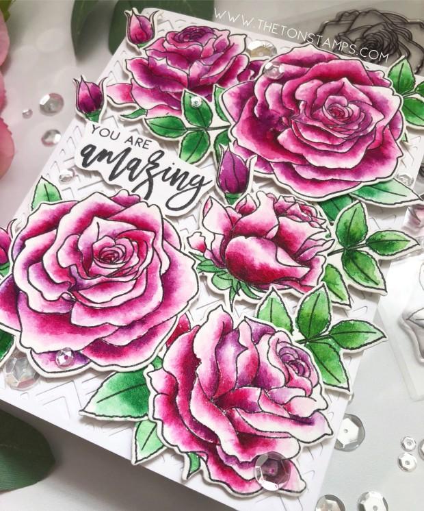 loose roses3