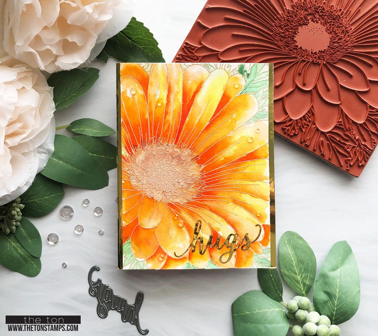 orange 34 daisy.jpg