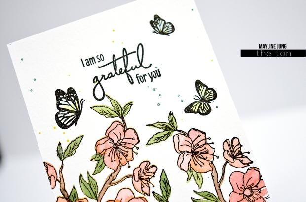 Mayline_theton_cards_6 copy