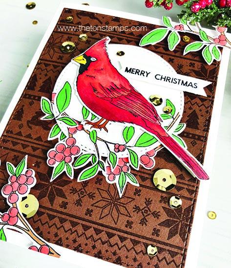 brown cardinal2