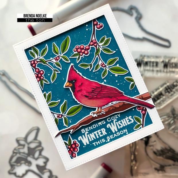 Cardinal-Friends-1