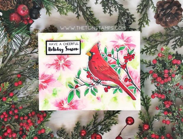 cardinal poinsettias