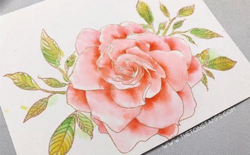 gardenia thanksgiving2