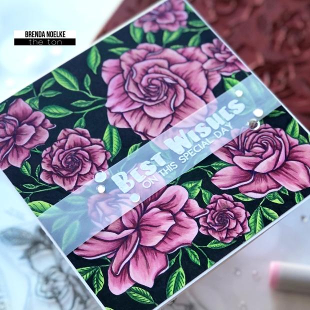 Gardenia-Best-Wishes3