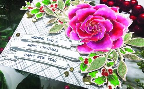 holiday gardenia4