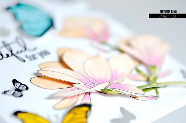 TheTon_Mayline_butterfly_card_02